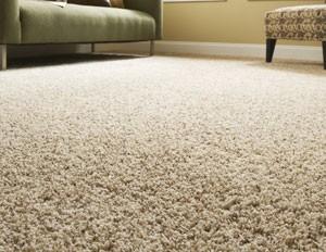 carpet-inline